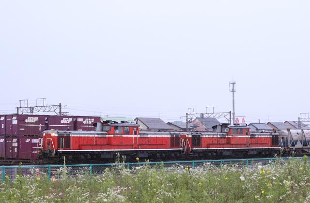 Dd51muro014